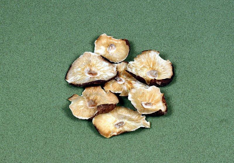 日本産原木乾椎茸 業務用大葉B足切