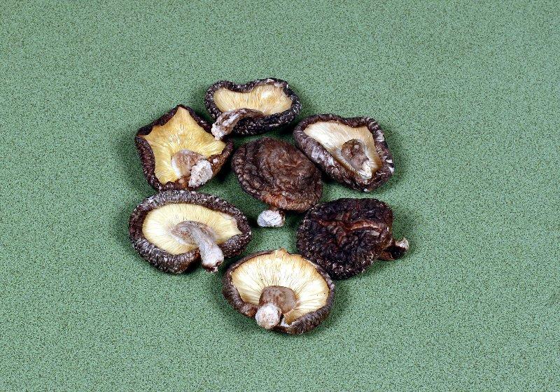 日本産原木乾椎茸 香信中葉