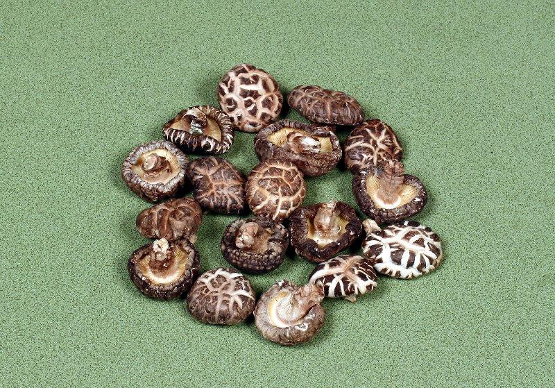 日本産原木乾椎茸 中粒冬菇