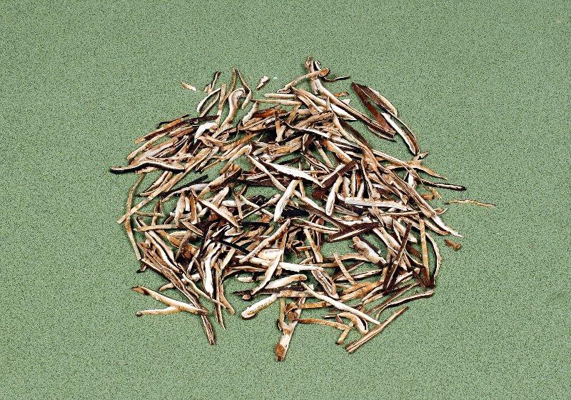 日本産原木乾椎茸 再乾燥スライス 3㎜×Free