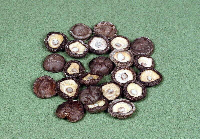 中国産菌床乾椎茸 光面足切厚菇 4~4.5㎝