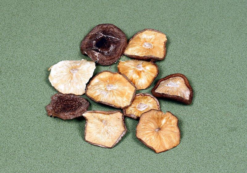 中国産菌床乾椎茸 規格外(L) 5㎝UP