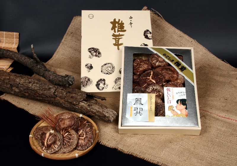 日本産原木乾椎茸ギフト T-30